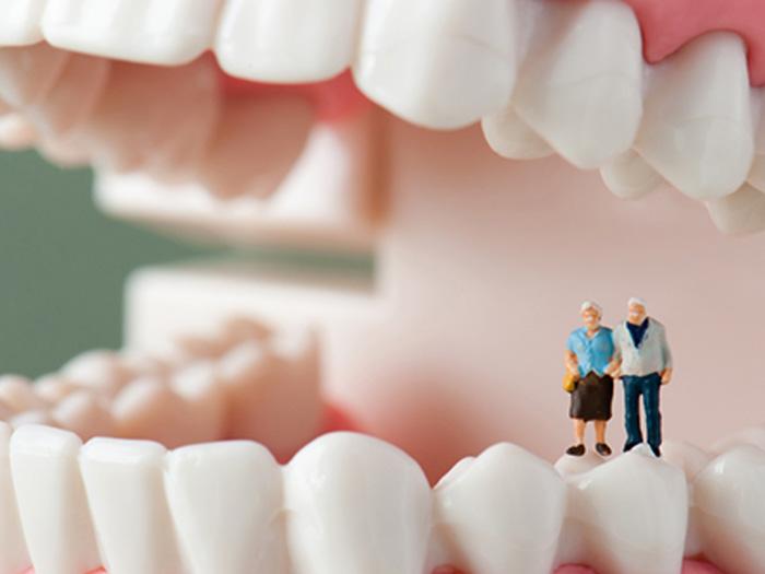 img_dental03